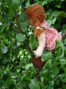 Waldorf doll in tree