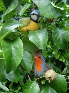 vogeltjes in boom